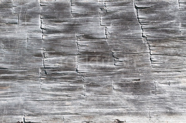 Wood Texture from a Log Cabin Stock photo © brianguest