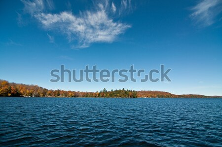 Canadian Lake with Autumn Colours and Blue Sky Stock photo © brianguest