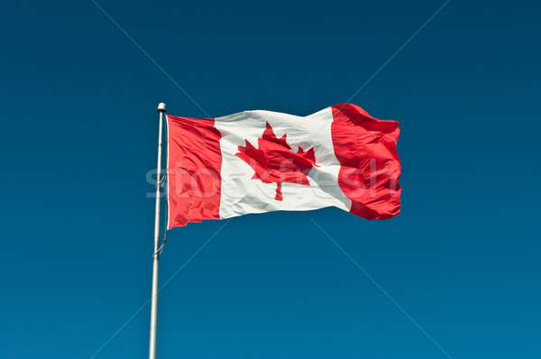 Waving Canadian Flag with Blue Sky Stock photo © brianguest