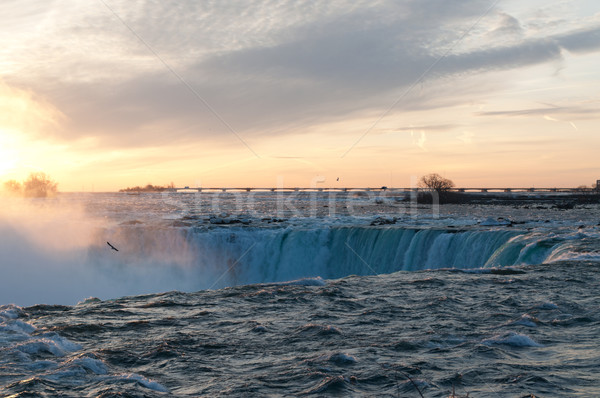 Stockfoto: Hoefijzer · zonsopgang · Niagara · Falls · water · natuur · schoonheid