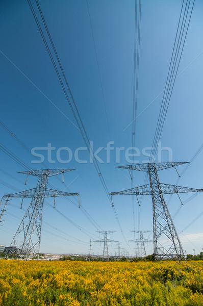 Elecrical Pylon Stock photo © brianguest