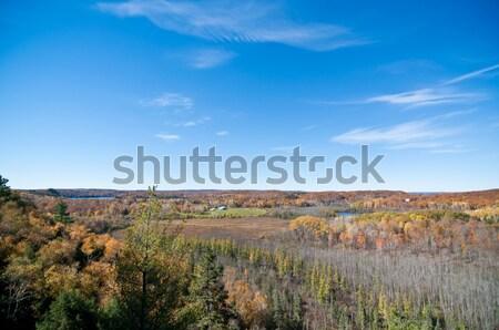 Jesienią krajobraz Błękitne niebo Kanada chmury Zdjęcia stock © brianguest