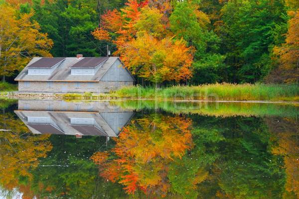 秋 池 森 自然 実行 新しい ストックフォト © brm1949