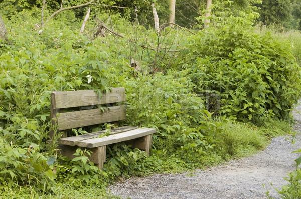 Stock photo: Nature Trail