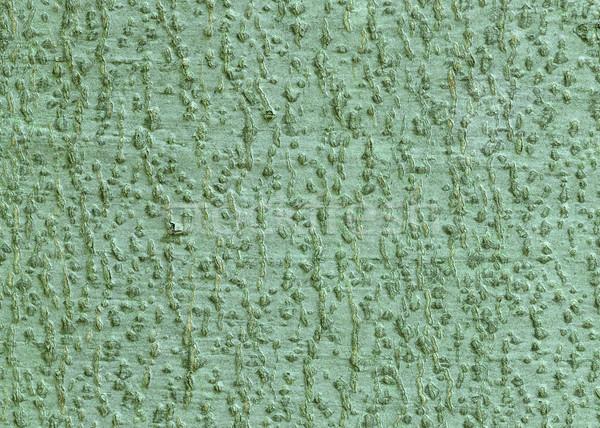 Kory kopia przestrzeń drewna charakter Zdjęcia stock © brm1949