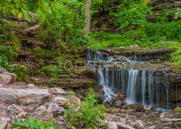 Wodospad późno wiosną charakter tapety parku Zdjęcia stock © brm1949