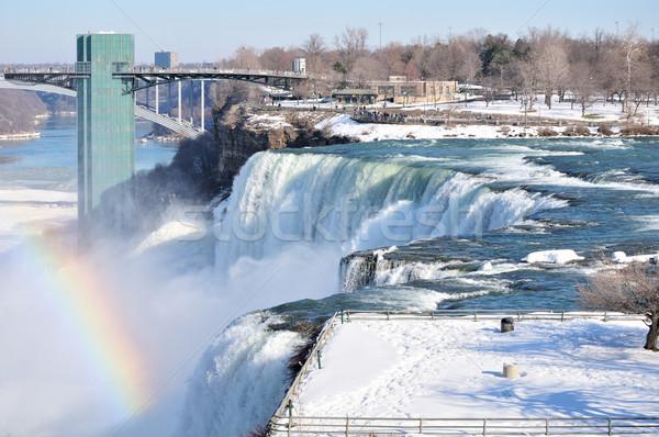 Amerikaanse Niagara Falls New York geit eiland winter Stockfoto © brm1949