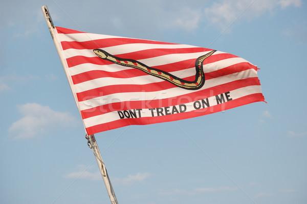 Navy Jack Flag Stock photo © brm1949