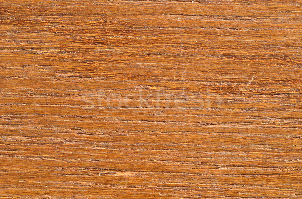 Bois macro grain de bois espace de copie texture Photo stock © brm1949