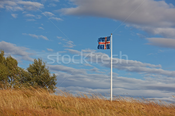 Icelandic flag Stock photo © broker