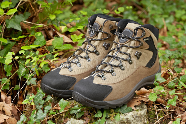 Hiking boots Stock photo © broker