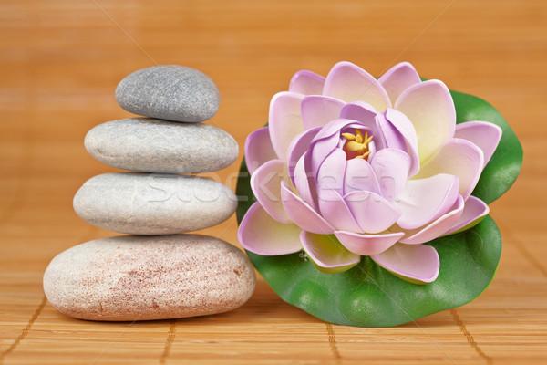 Equilibrado pedras flor raso saldo Foto stock © broker