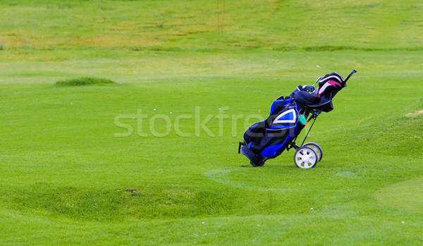 Golfing equipment in the bag Stock photo © broker