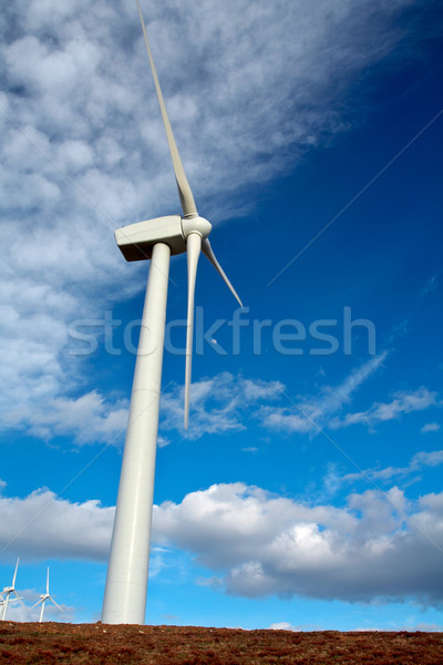 Wind turbines Stock photo © broker