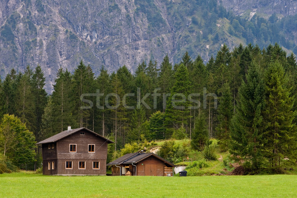 Cottages in Austria Stock photo © broker
