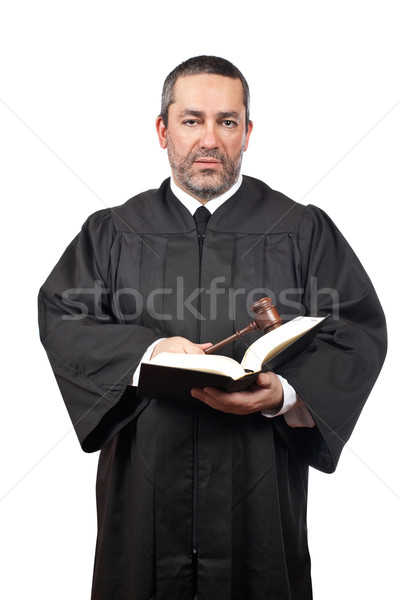 Judge holding the gavel and book Stock photo © broker