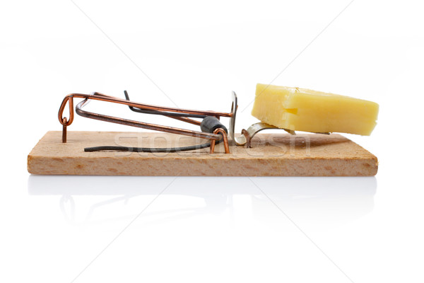 Mousetrap with cheese Stock photo © broker