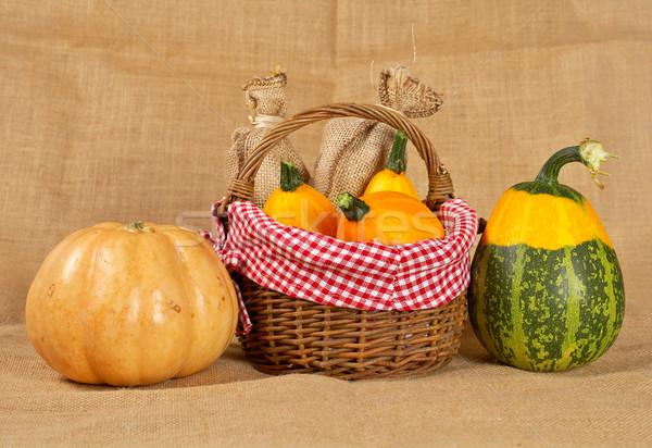 Pumpkins Stock photo © broker
