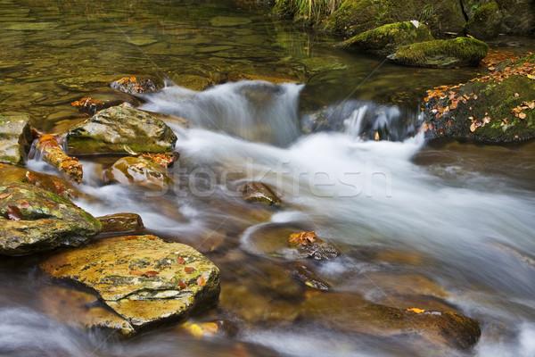 Autumn falls Stock photo © broker