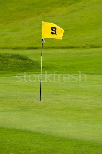 Golf green Stock photo © broker