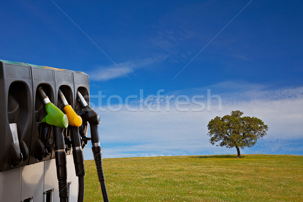Stock photo: Energy and nature