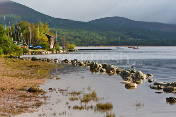 Loch Morlich Stock photo © broker