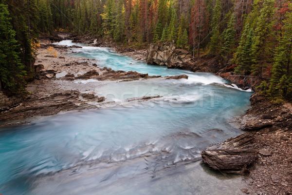 Kicking Horse River, Canada Stock photo © broker
