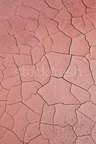 Parched earth Stock photo © broker
