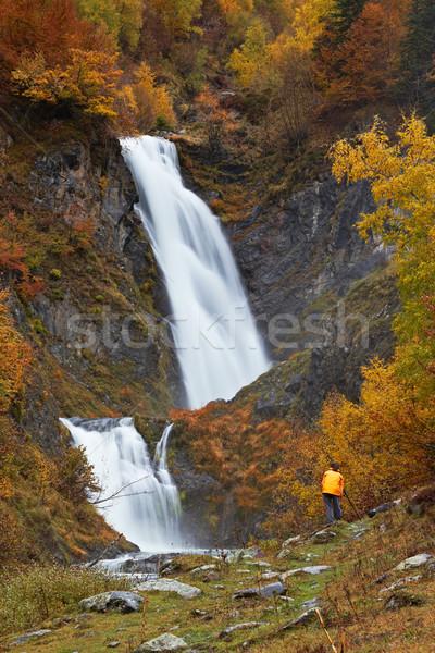 Autumn brook Stock photo © broker