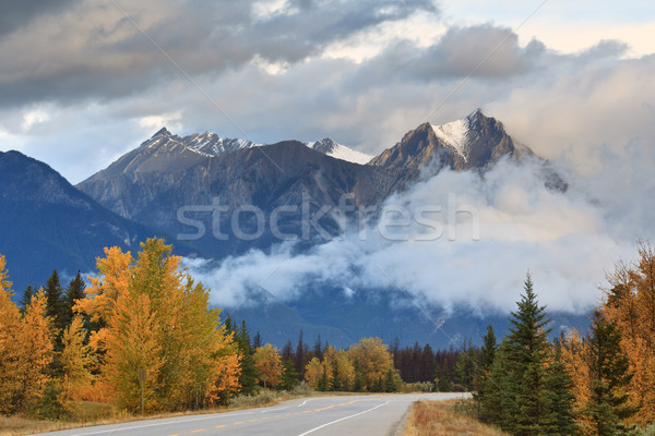Lonely road crossing the Canadian  Stock photo © broker