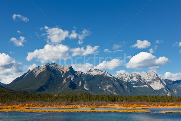 Snaring River Stock photo © broker
