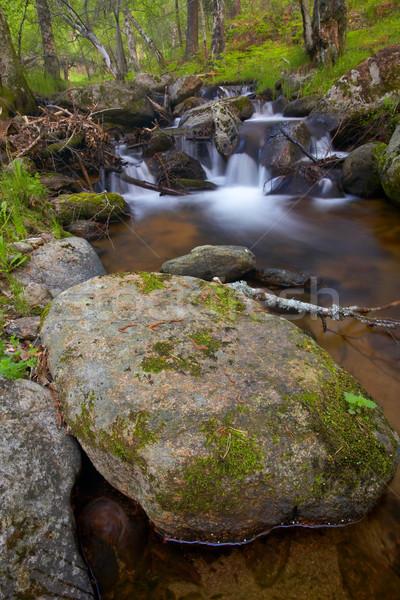 Górskich rzeki wodospady wiosną sezon drzewo Zdjęcia stock © broker