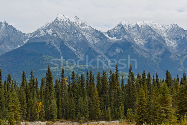 Stock photo: Snowcapped Canadian Rockies