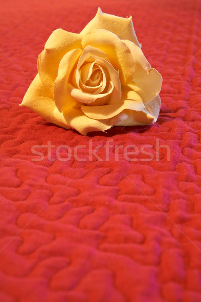 Artificial flower on red background Stock photo © broker
