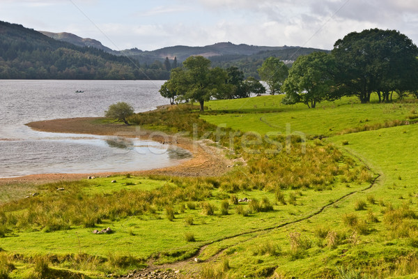 Peaceful lake in Scotland Stock photo © broker