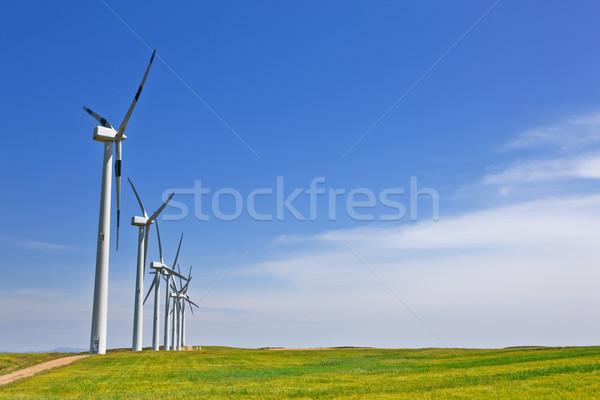 Szél energia szélturbinák farm zöld mező Stock fotó © broker