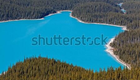Peyto Lake, Banff National Park, Canada Stock photo © broker