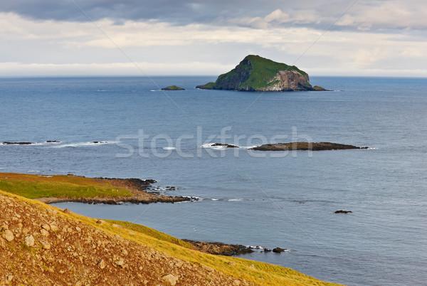 Skrudur island, East Fjord, Iceland Stock photo © broker
