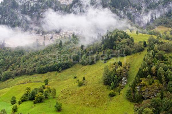 Landscape under the fog in Austria Stock photo © broker