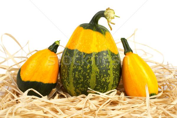 Yellow and green pumpkins Stock photo © broker