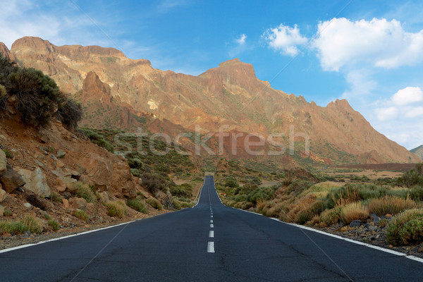 Lonely road to nowhere Stock photo © broker