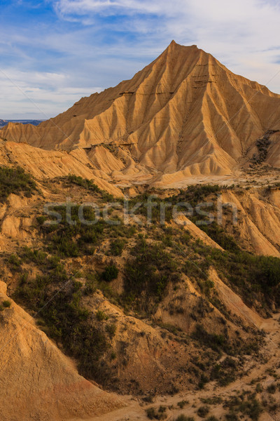 Desert landscape Stock photo © broker