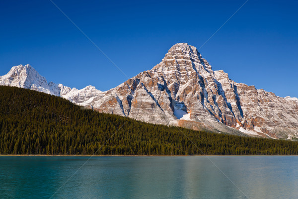 Mount Chephren and Waterfowl Lake Stock photo © broker