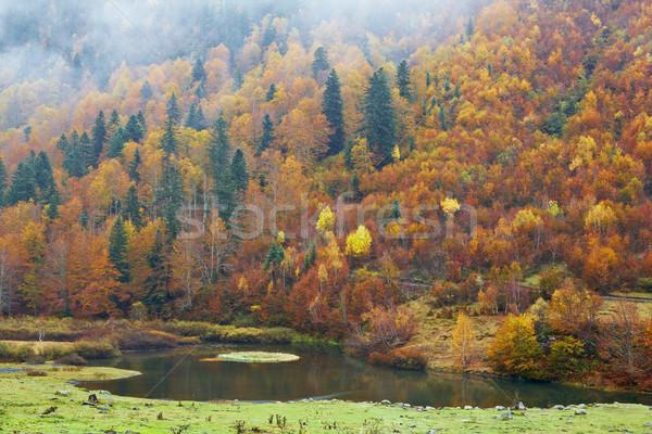 Hegy folyó ősz színek kicsi fa Stock fotó © broker