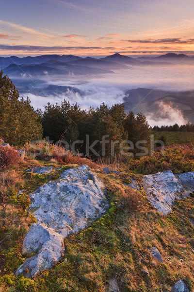 Berge Nebel Winter sunrise Landschaft Berg Stock foto © broker