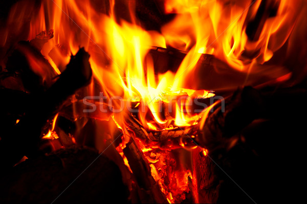 Fire and flames Stock photo © broker
