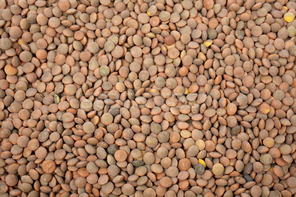Lentils background Stock photo © broker