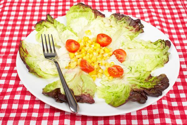 Salata marul domates mısır kare sığ Stok fotoğraf © broker