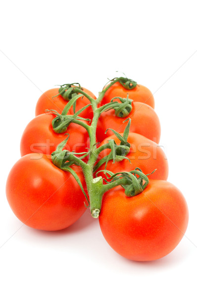 Tomatoes on bunch Stock photo © broker