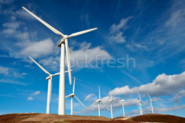Wind turbines farm Stock photo © broker